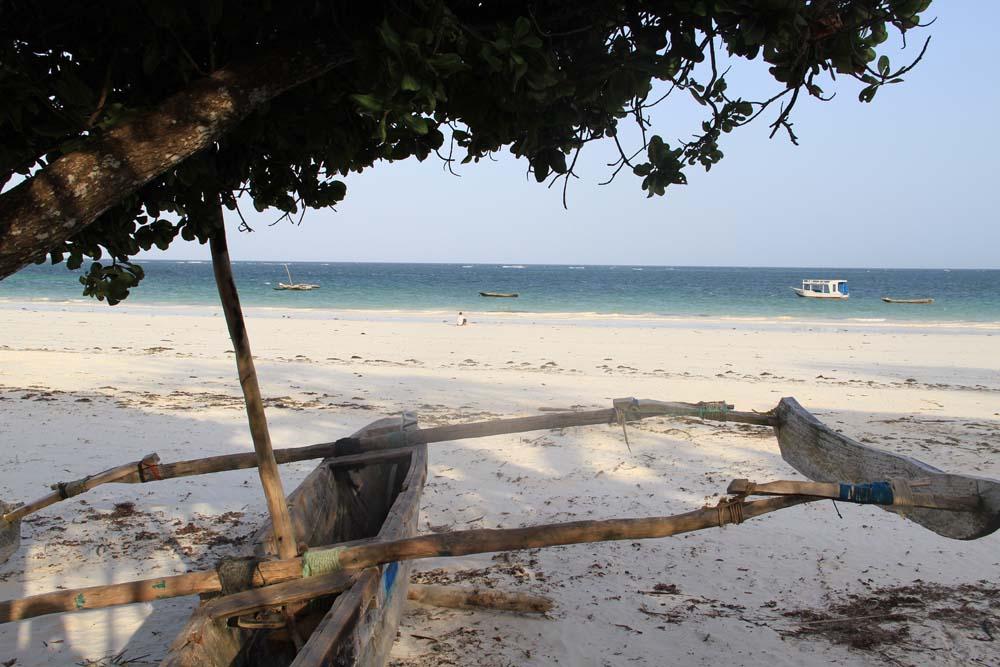 Diani's Beach